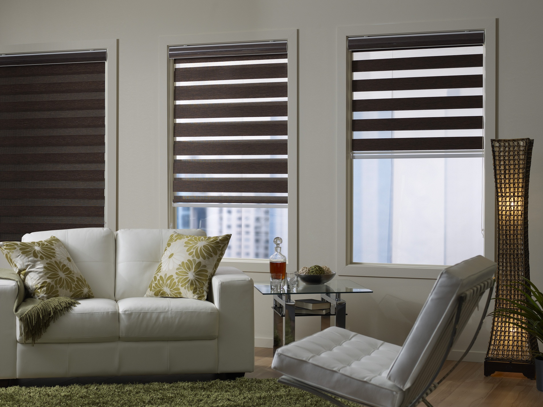 Picture of Zebra Blinds Oakville